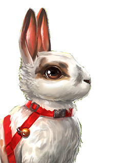 rabbit_nb_icon